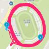 エア柴又レポ3(ある意味GPSアートだよね?)